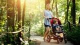 С какого дня можно гулять с новорожденным: режим ребенка, условия для прогулки и советы педиатров